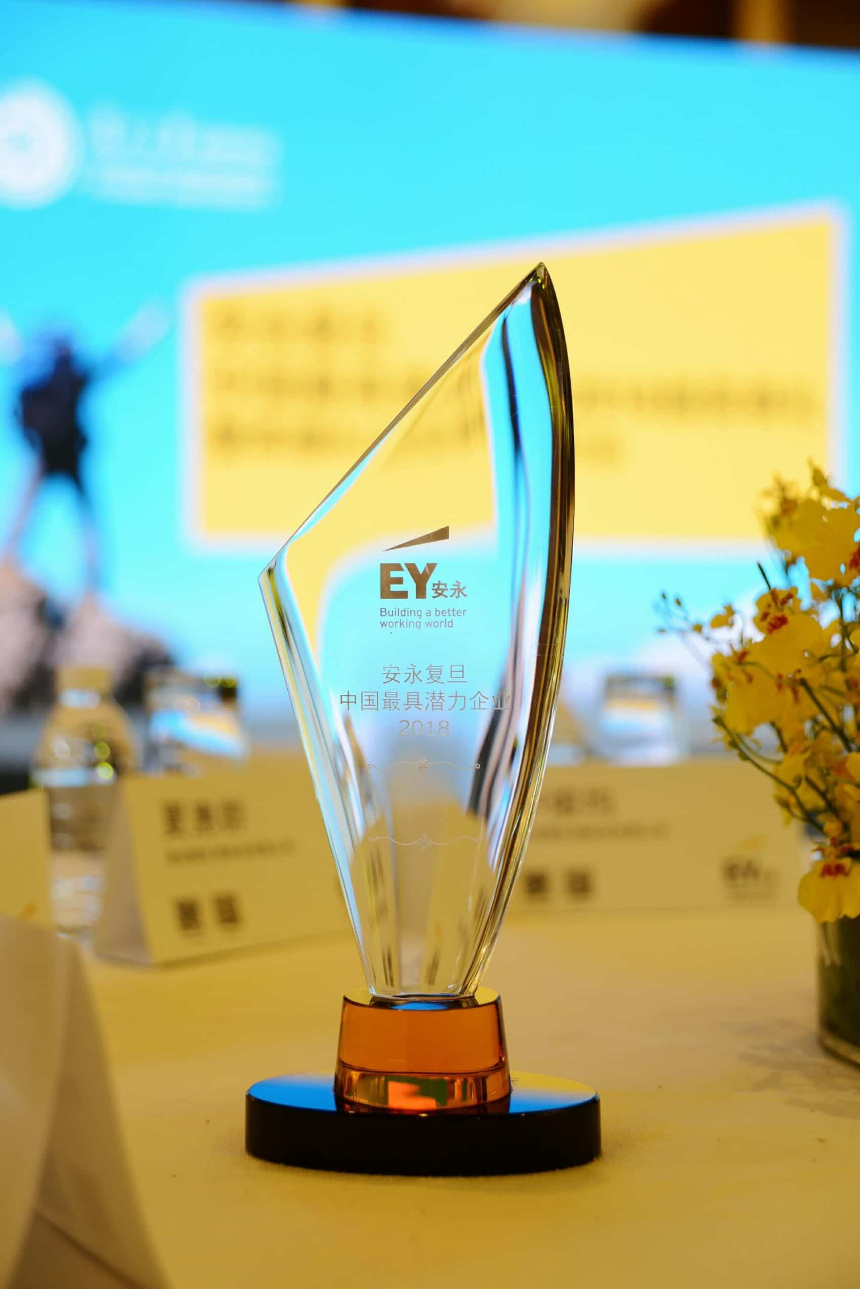 EY's 2018 Promising Company Award