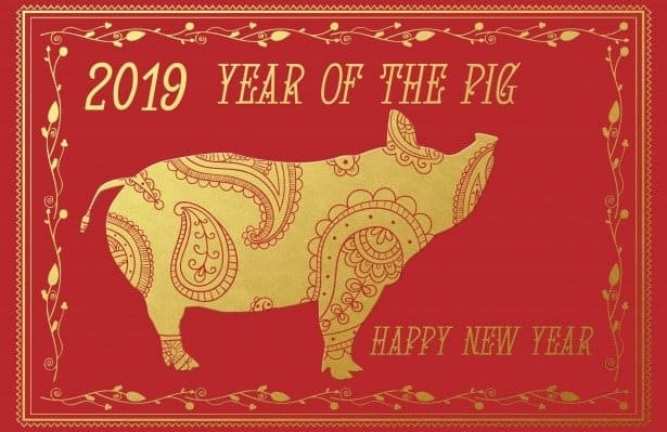 Chinese New Year of Pig