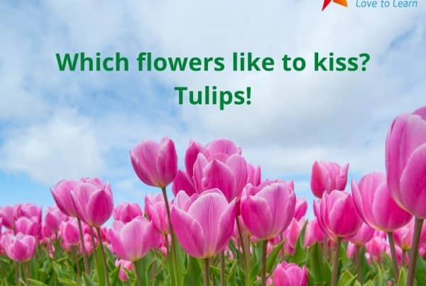 Spring Riddles For Kids With Answers 1